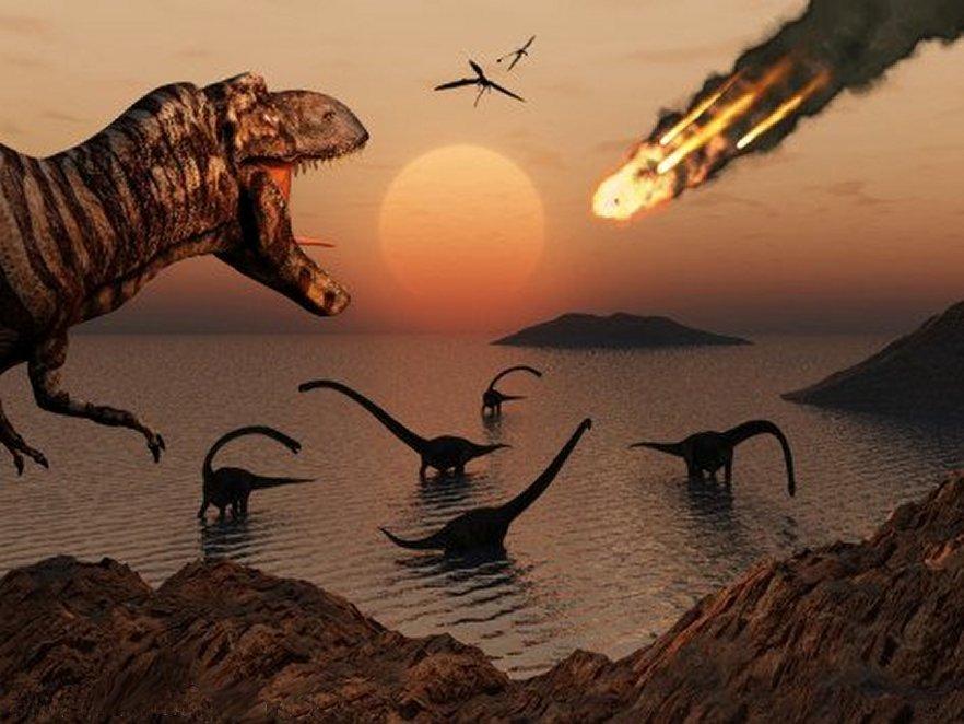 Paleontology - Tyrannosaurus Rex and Brachiosaurs