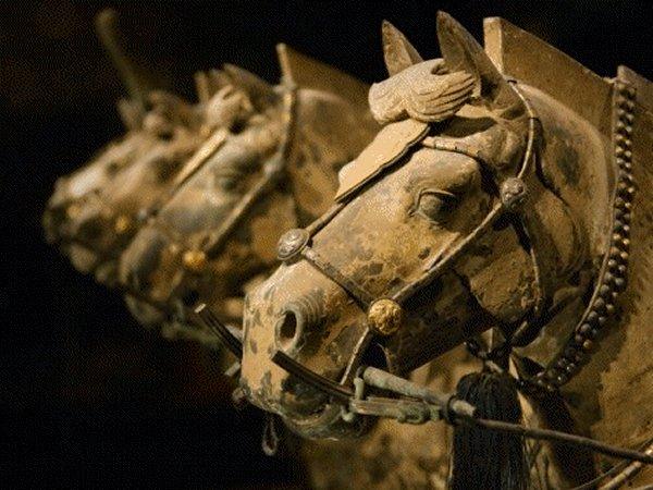 Terracotta Army, Horses