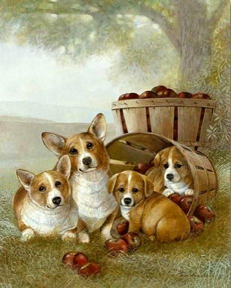 Apple Dumpling by Ruane Manning