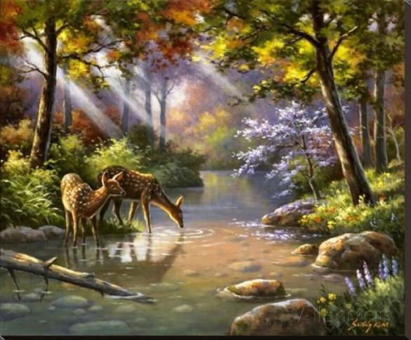 Doe Ray Me Creek by Sung Kim - Canvas Print