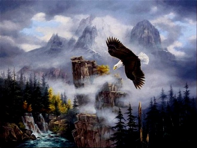 Eagle's Domain by Rudi Reichardt, Canvas Print