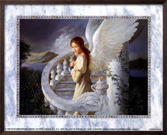 Radiant Angel by Edward Tadiello