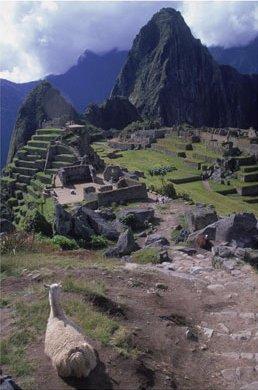 Peru Art Prints